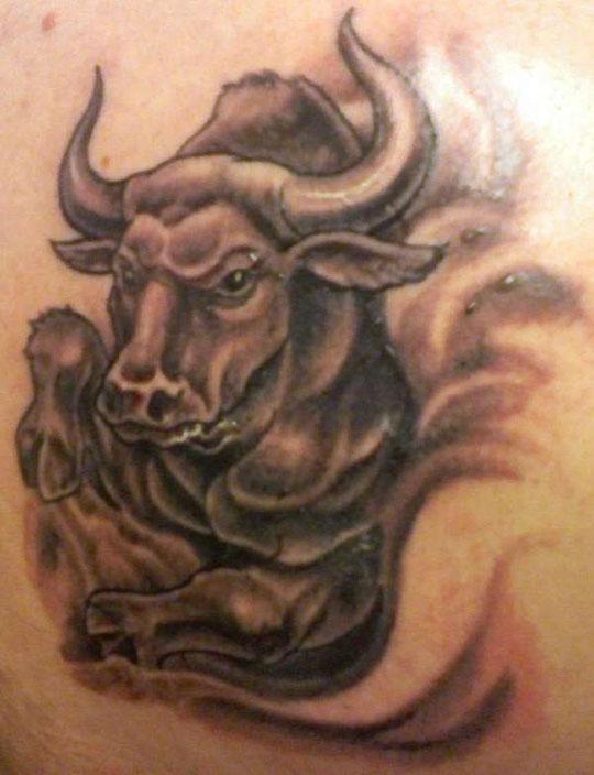 Tattoo Concept: bull tattoo designs